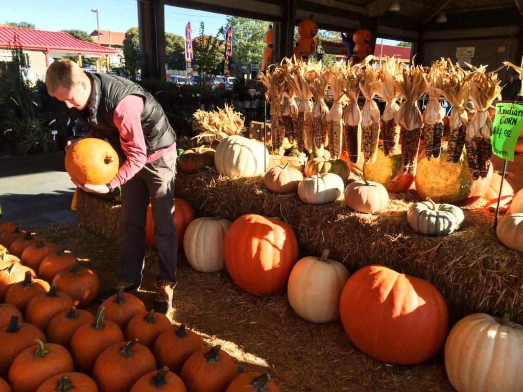 Farmers' Market October-2