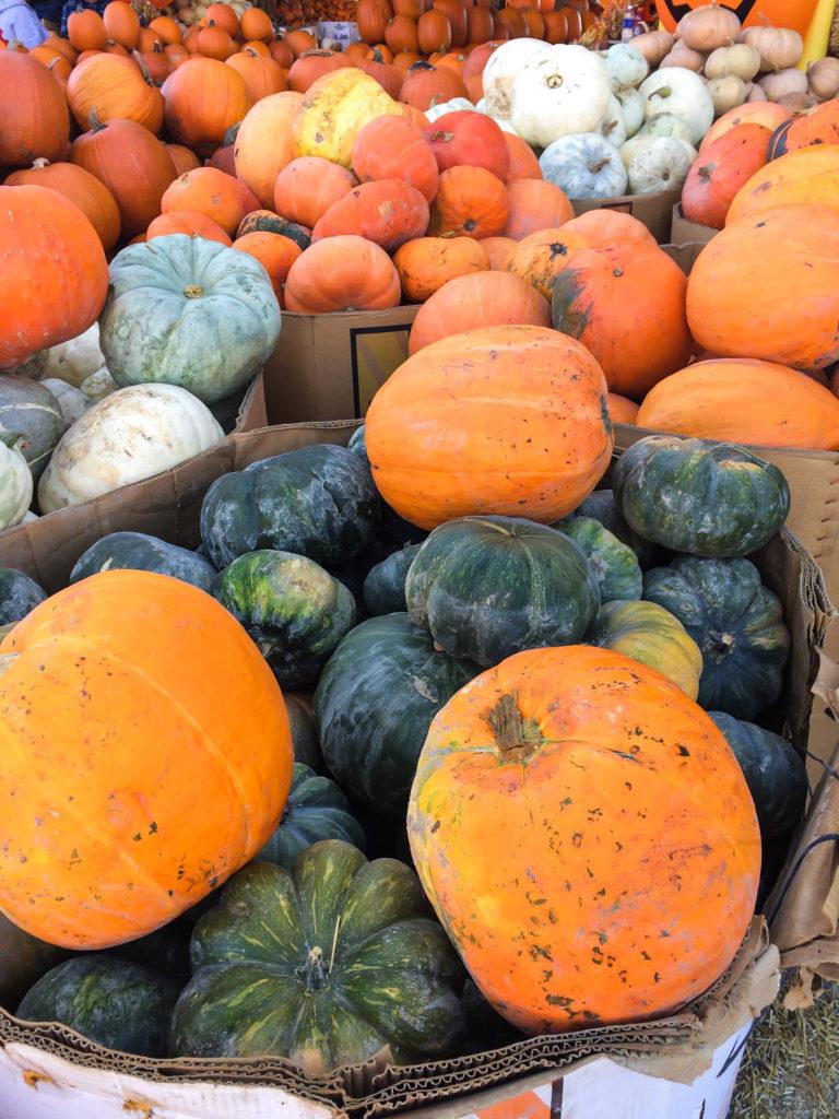Farmers' Market October-3