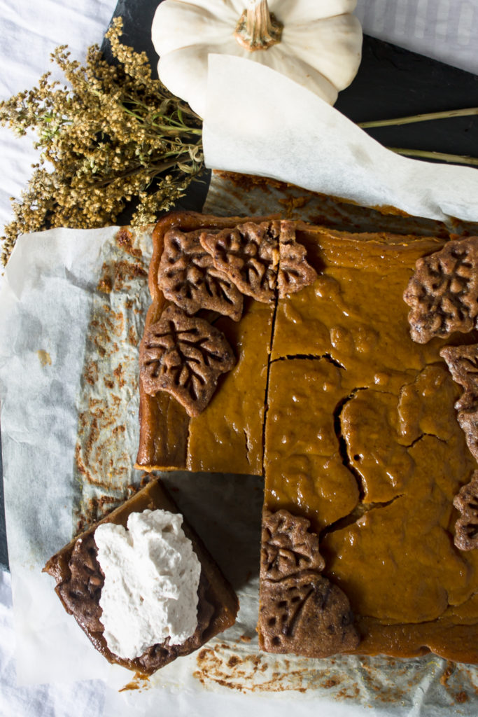 Pumpkin Pie Bars with Chocolate Chip Gingerbread Crust-6