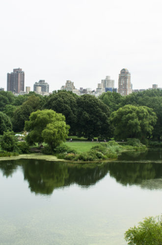 brain tumor trip – nyc part II: central park