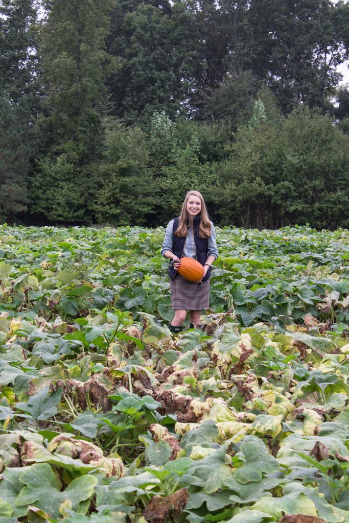 Pumpkin Picking-6
