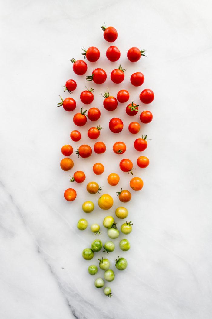10 tomato recipes